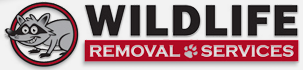 Wildlife Removal Services - Loveland Ohio